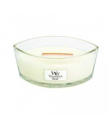 Teck blanc - Ellipse Wood Wick - 1