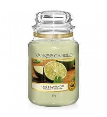 Coriandre et Citron Vert - Grande Jarre